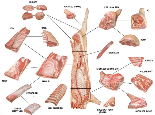 *even within the u s , what is a primal cut will differ between type of  carcass—cattle, lamb and pigs