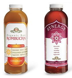 cultures for health kombucha