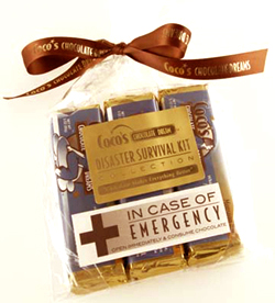 Disaster Survival Kit