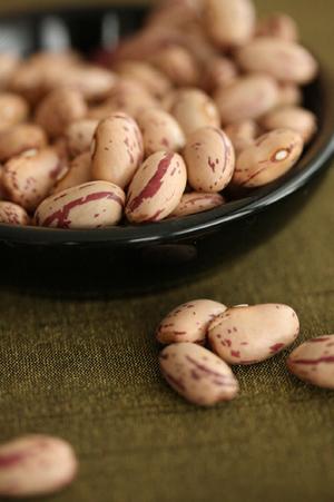 Gourmet Beans
