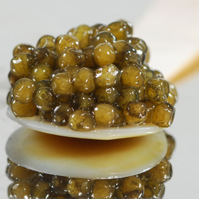Golden Imperial Caviar