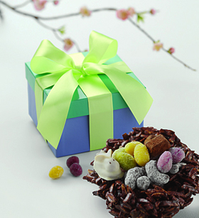 Rocher Nest