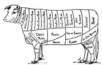 Alpaca Anatomy Diagram additionally Dairy Goat Body Parts Diagram moreover Best Value Steak Cuts additionally Beef Cow Parts Diagram also Haunch Loin Sirloin. on cuts of meat from cow